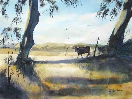 Cows-FranklinFord_WEB